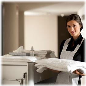 Hotel Housekeeping Carts